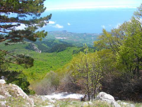 Вид с горы на Черное море